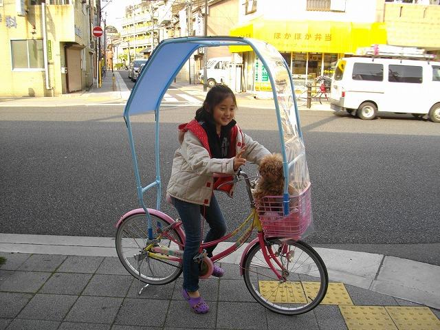 雨除けの屋根付き自転車 ...